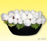 Meyve Sepeti - Meyve Cicek Kar Tanesi Meyve Çiçeği Ürünün ayrıntılarını görmek için tıklayın !