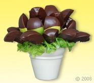 MEYVE CİCEK - MEYVE SEPETİ Çikolata Sevdası Meyve Çiçeği Ürünün ayrıntılarını görmek için tıklayın !